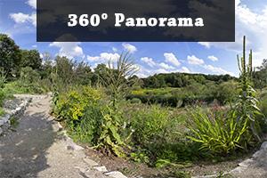 Panorama Westpark III