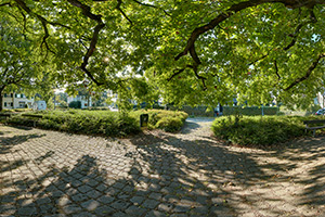 Panorama: Gronauer Waldweg