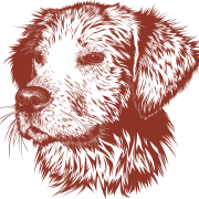 Logo Hundespielplatz Kürten